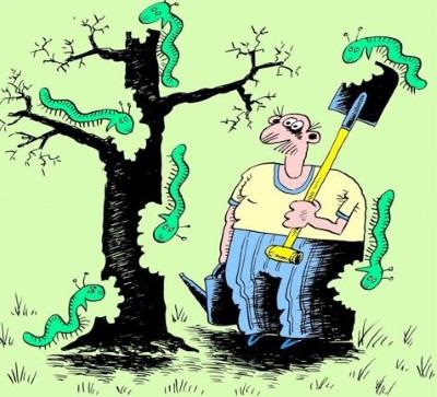 Борьба с вредителями